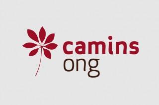 CAMINS2